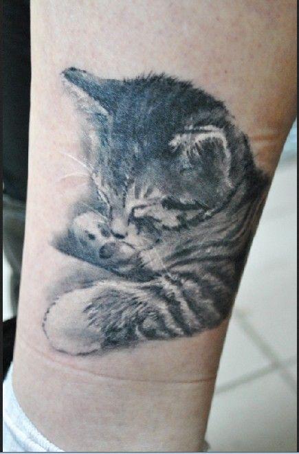 Cute sleeping little kitten tattoo on leg - Tattooimages.biz