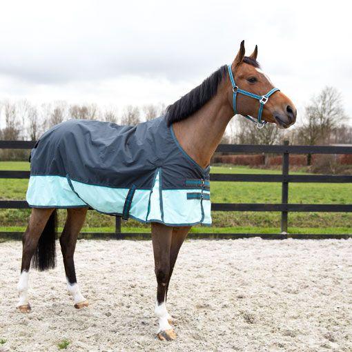 VOOR JE PAARD • Deze zeer sterke waterdichte Tiger deken van Pagony. Nieuwe kleur: donkergrijs / mintgroen met een aqua bries. www.divoza.com  #paardendeken #divoza #divozahorseworld #ruitersport #paard #horses #horserug