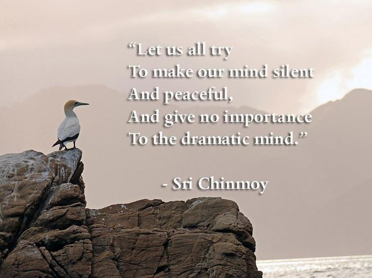"""Let us all try To make our mind silent And peaceful, And give no importance To the dramatic mind.""  - Sri Chinmoy"