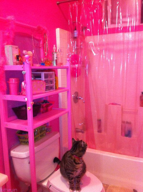 WAAYYYYY too much lol. But I love the shower curtain! ... And the kitty