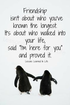friendship isn't about who you've known the longest quote - Google Search