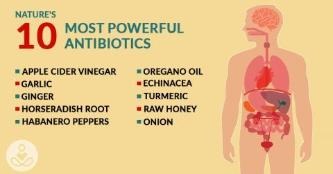 The introduction of antibiotics to the field of medicine has saved countless lives, turning serious and life-threatening infections into temporary ones. However, with the millions, if not billions of prescriptions for antibiotic drugs that doctors have filled out over the years there comes a serious price: microorganisms are adapting to our techniques. We now have... View Article