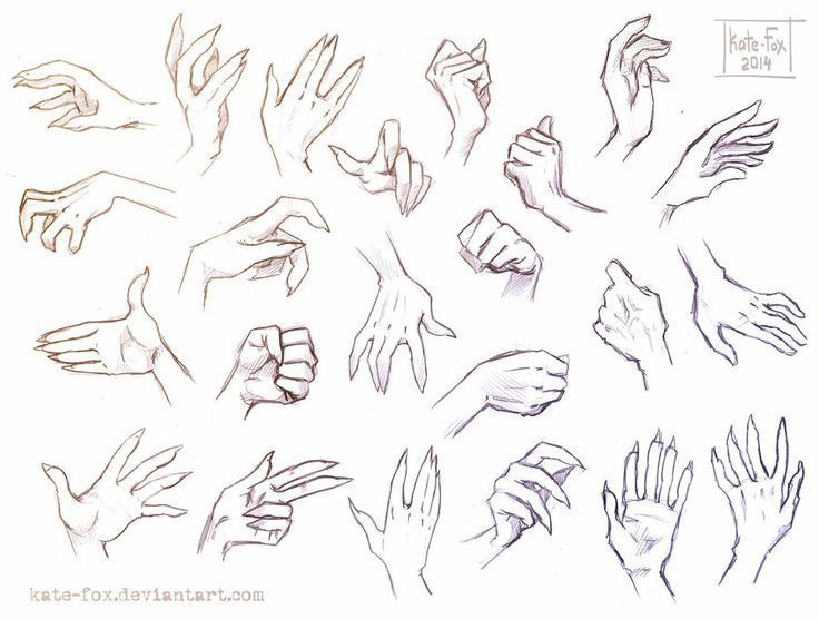 Girl Hand Reference Drawings In 2020 Hand Drawing Reference Hand Reference How To Draw Hands