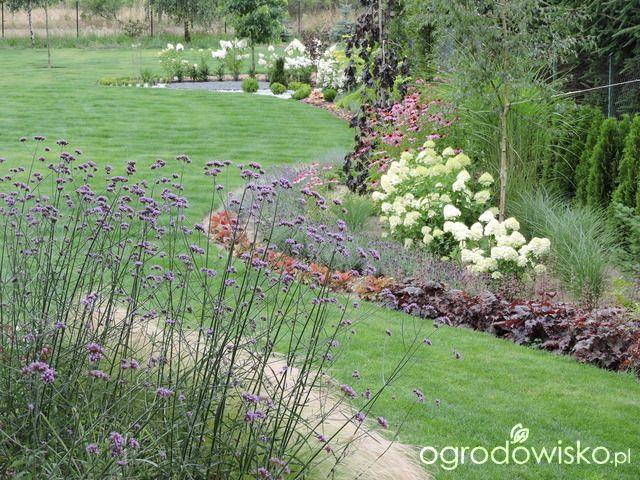 Zielonej ogrodniczki marzenie o zielonym ogrodzie - strona 872 - Forum ogrodnicze - Ogrodowisko