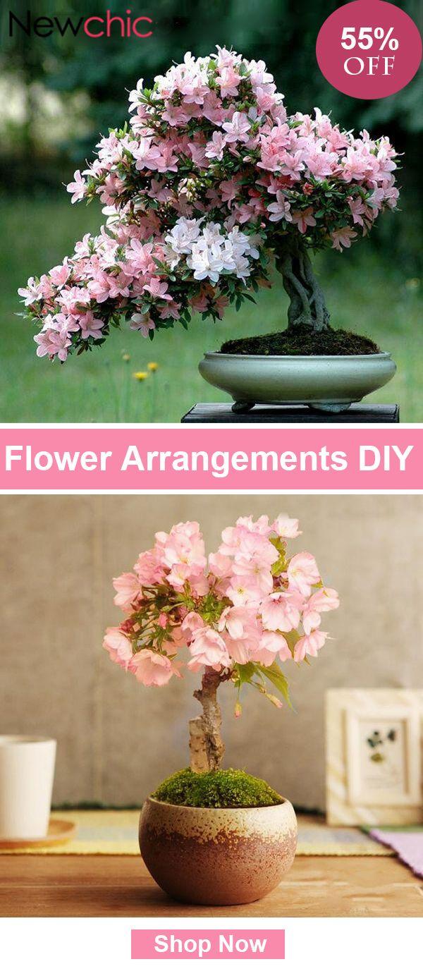 10pcs Rare Sakura Seeds Cherry Blossoms Seeds Garden Flower Bonsai Tree Flower Arrangements Diy Flowers Flower Garden