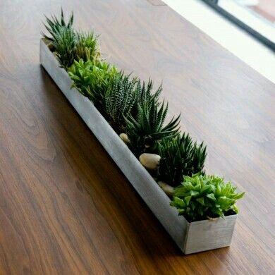 Jardinera centro de mesa con cactus.