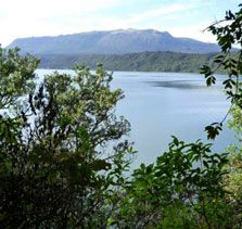 Tarawera Trail - Meander your way through bush from Te Waiora to Hot Water Beach Campsite. Stay overnight or pre-book a water taxi to The Landing. 15 km one way Walking and tramping 5-6 hr