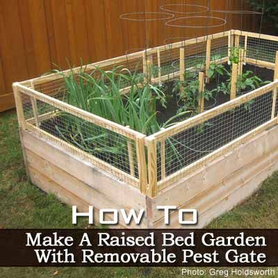 How To Make A Raised Bed Garden With Removable Pest Gate