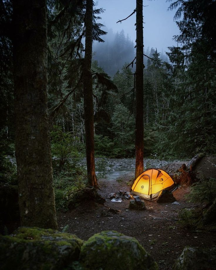 There's nothing quite like a campfire meal. For me it feels almost primal to cook beneath the stars out in the woods.