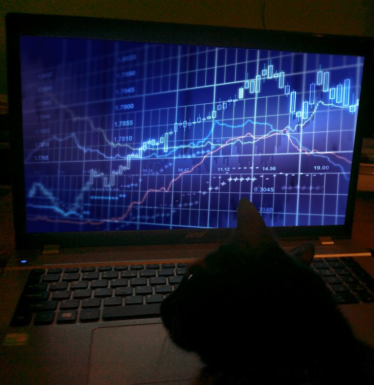 Czy teoria noblisty-fizyka Schrödingera ma jakieś zastosowanie w inwestowaniu? I co ma do tego kot Schrödingera? Odpowiedź już na blogu Prywatny INV€$TOR!