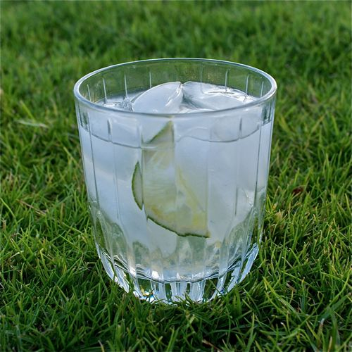 Gin and tonics are a classic summer cocktail with a refreshing, light taste - and a great way to use limes!