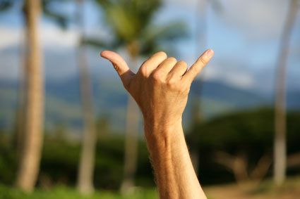 What is the shaka sign?