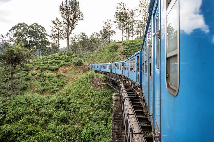 De treinrit van Kandy naar Nuwara Eliya in Sri Lanka wordt ook wel de mooiste van de wereld genoemd! Iets voor jou?Foto: Odiza Fotografie