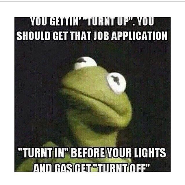 Muppet Christmas Meme: 1000+ Images About Muppet Mayhem On Pinterest