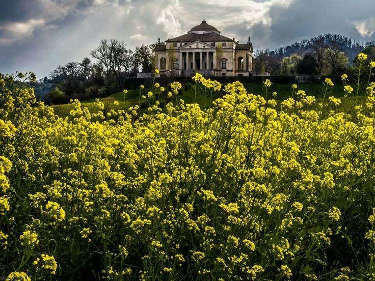 Io vivo a 5 km da qui la vedo tutti i giorni La Rotonda del A.Palladio Vicenza   o villa CAPRA preferisco  LA ROTONDA