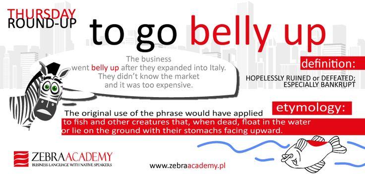 Thursday Round-Up | To go belly up | Zebra Academy | Business English | Native Speaker | Warszawa | English Grammar