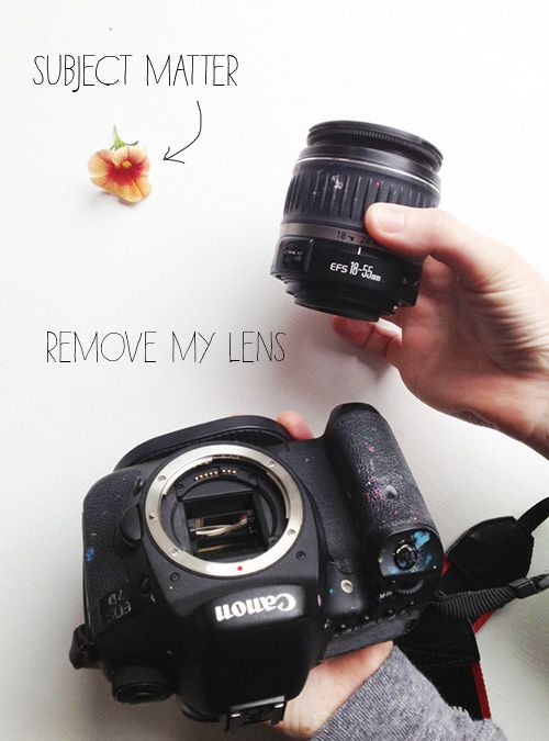 How to shoot macro with a regular lens!