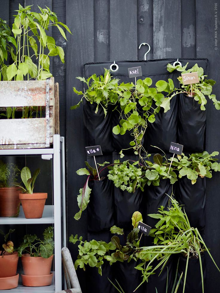 178 best images about Krukor& Växter on Pinterest Greenhouses, Inspiration and Spring flowers