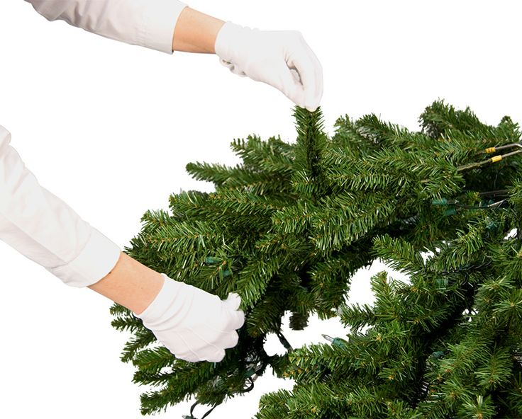Christmas Tree Setup Instructions : Best images about christmas planning help on