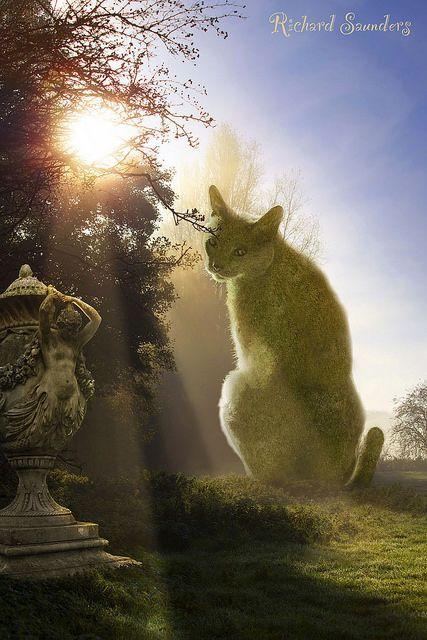 The Topiary Cat enjoying the morning sun...  photoshopped by Surrealist, Richard Saunders