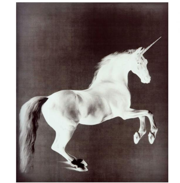 mark wallinger (poss using the famous 'whistlejacket' painting?)