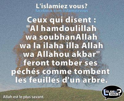 Al hamdoulillah = Louange est à Allah SoubhanAllah = Gloire et purté à Allah la ilaha illa Allah = Il n'y a de divinité qu'Allah Allahou akbar = Allah est le plus grand