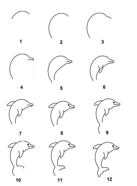 Easy how to draw a dolphin! Best Chalk Markers set http://www.amazon.com/dp/B0187DKT6Q