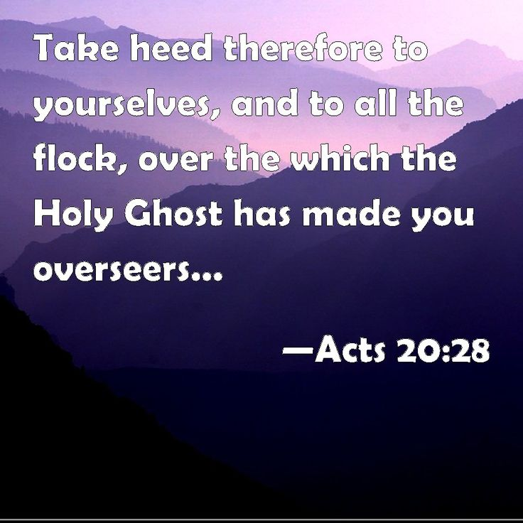 Acts 20:28 Take heed therefore to yourselves, and to all the flock, over the which the Holy Ghost has made you overseers, to feed the church of God, which he has purchased with his own blood.