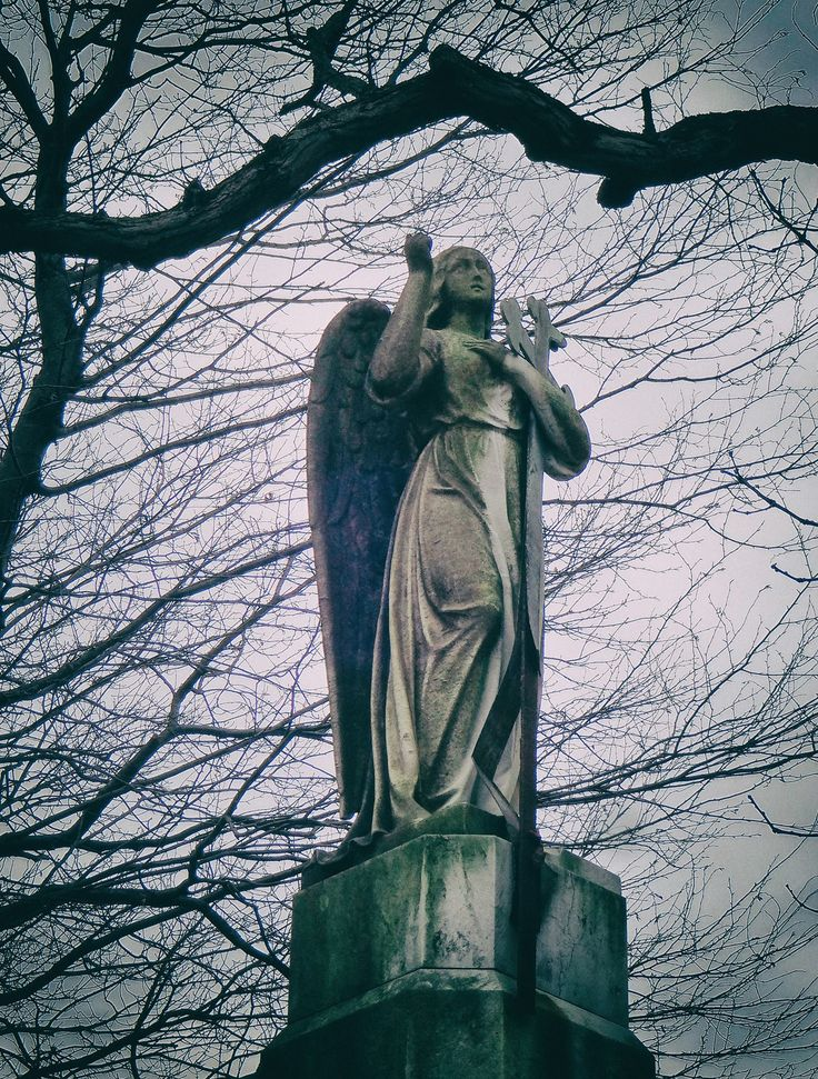 The De Witt Angel at Albany Rural Cemetery.  Early Spring 2016.  Photo by Paula Lemire