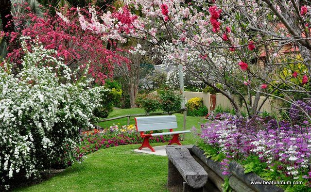 Toowoomba, Queensland in spring in September!