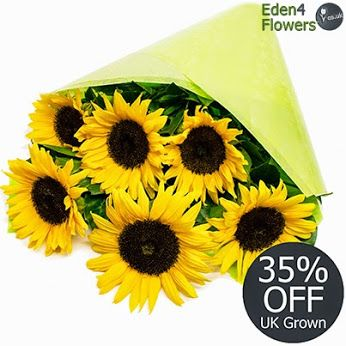 35% OFF - Simply Sunflowers  Six of our own home grown Somerset Sunflowers. Freshly cut daily by our florists, arranged and packed. An ideal #flower gift that's sure light and won't break any budget.  http://www.eden4flowers.co.uk/content/content_prod_detail.numo?idarea=1&idareacat=4&idareacatsub=41&id=2807