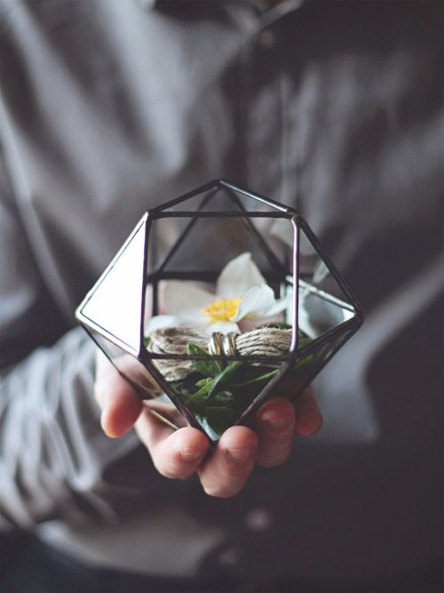 etsyfindoftheday:  FRIDAY FRENZY | etsyfindoftheday 4 | 7.3.15mini geometric terrarium cube by waenas you can see by this beautiful product photo, this delightful stained glass terrarium can also double as a ring holder for weddings. win-win! choose from four different metallic finishes: black, silver, and rustic or bright copper.