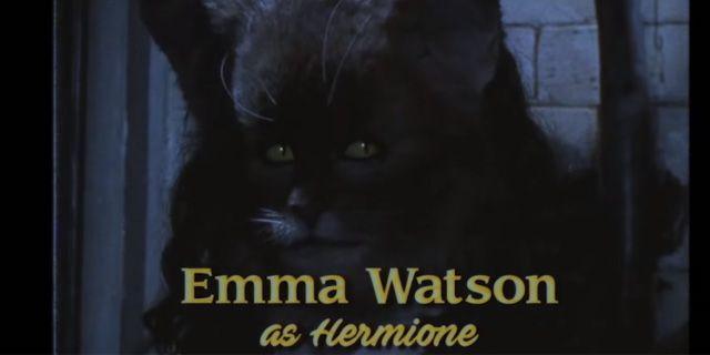 Harry Potter in versione sitcom anni '90, i disegni della Rowling - Sw Tweens