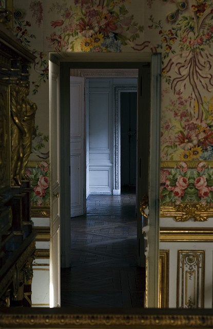 Secret door that Marie Antoinette escaped through in October 1789 when the Paris mob stormed Versailles.