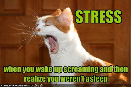 22 best STRESSSSSSSSS images on Pinterest | Funny stuff ...