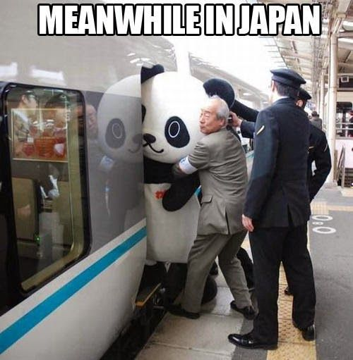Meanwhile in Japan                                                                                                                                                                                 More