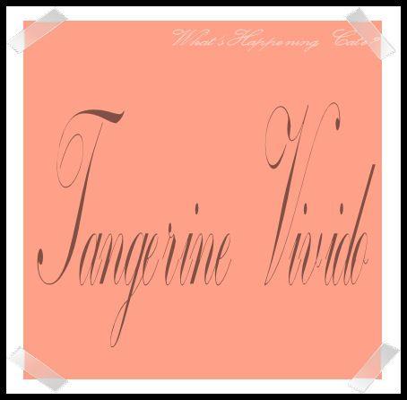 #Tangerine Vivido I colori che maggiormente spengono la naturale luminosità del viso della Donna Inverno Profondo    #Colori #AnalisiDelColore #armocromia #DeepWinter #seasonalColorAnalysis #Palette #winter #DonnaInvernoProfondo #inverno