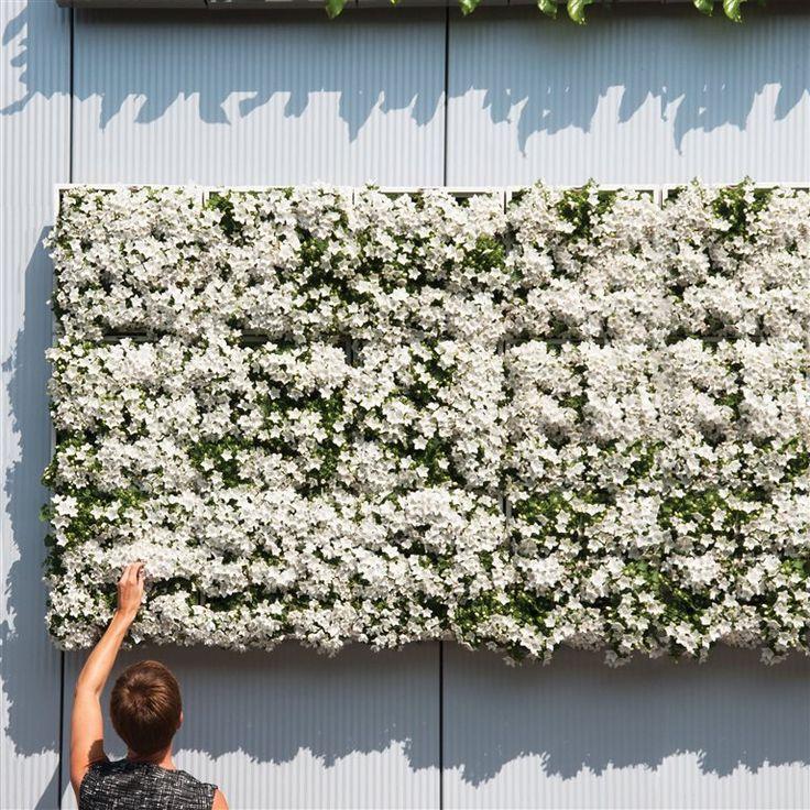 Geef je binnen- of buitenomgeving een onweerstaanbare 'touch of green' met de D&M Depot Karoo. Gebruik de plantenbak horizontaal of hang hem verticaal als een schilderij van groen aan de muur! Bevestigingsmateriaal en potgrond wordt meegeleverd.