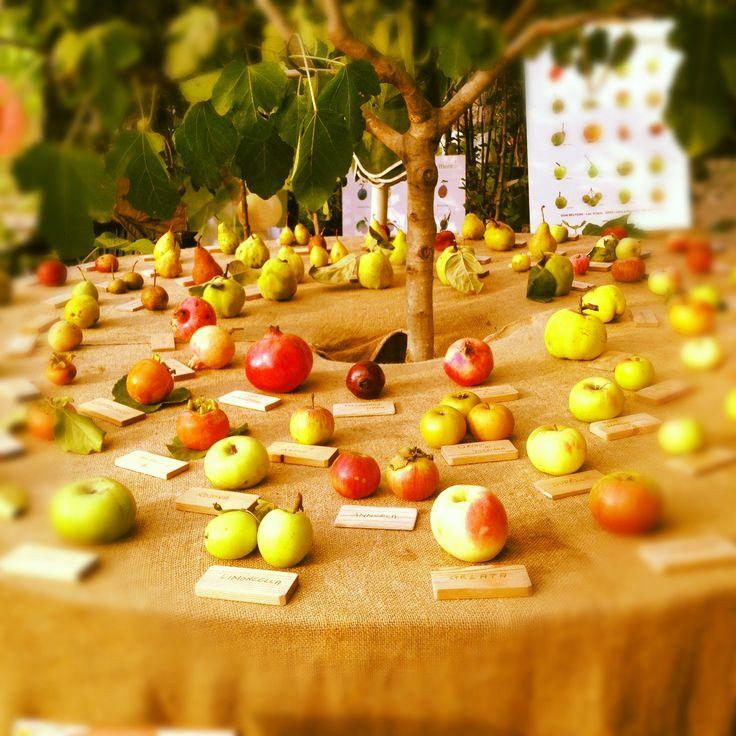 Apple, Old varieties - Villa Erba, #Orticolario 2012