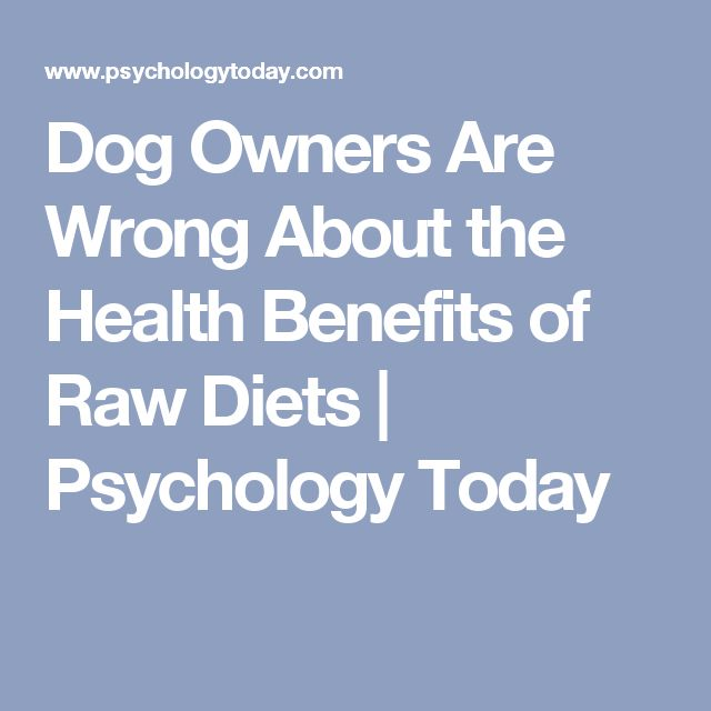 Dog Owners Are Wrong About the Health Benefits of Raw Diets | Psychology Today