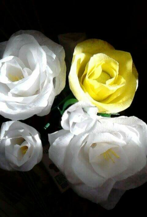 Rózsák krepp-papírból