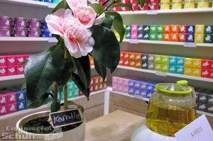 Tea Time in Berlin: Løv Organic #Tea #Tee #TeaTime