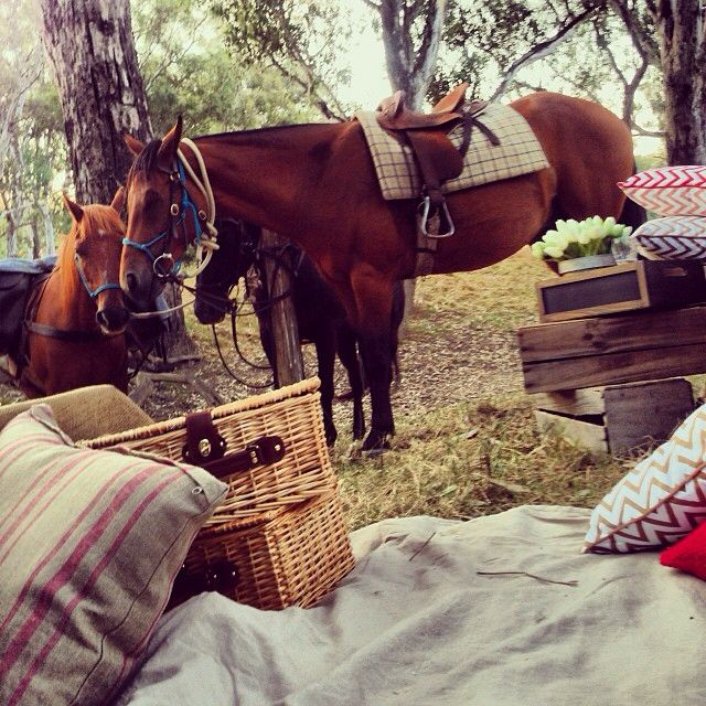 Horses and picnics by the King River in Oxley, Victoria. Australia.