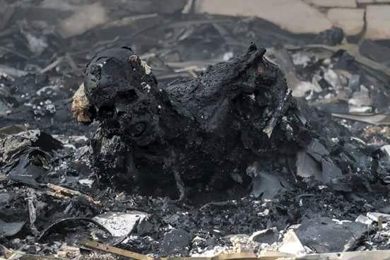 В результате бомбардировки ВВС Саудовской Аравии столицы Йемена - было убито и ранено от 450 до 760 человек, точное число убитых и раненых неизвестно до сих пор, вероятно перевалит за 1000. Удар был нанесен по траурной процессии.  По поводу этих более чем полуторагодичных военных преступлений, импотенты из ООН и мерзавцы из Госдепа не будут особо волноваться, собирать срочные совещания и требовать судить саудитов за более чем очевидные военные преступления, когда терпя позорные поражения от…