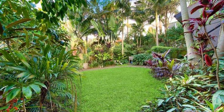 68 best images about subtropical garden ideas on pinterest