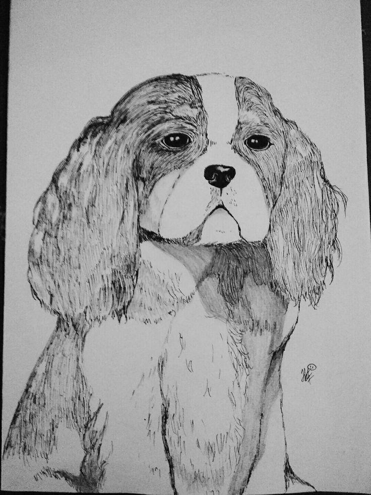 Doggie :3