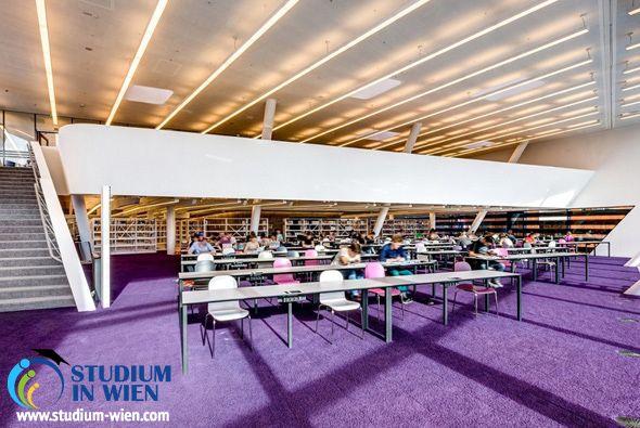 Вена всегда была известна своей экономической школой – здесь учились лауреаты Нобелевской премии в этой сфере, благодаря чему Венский экономический университет превратился в европейский стандарт качества образования