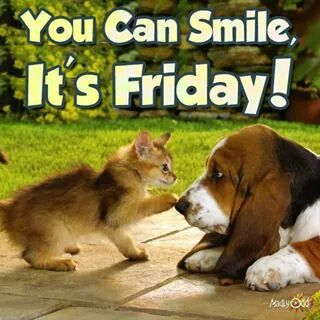 1000+ ideas about Happy Friday Pictures on Pinterest ...