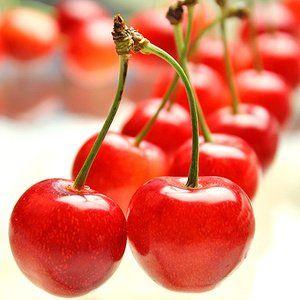 山形県産 さくらんぼ 佐藤錦。 Japanese cherry, Satou-nishiki.