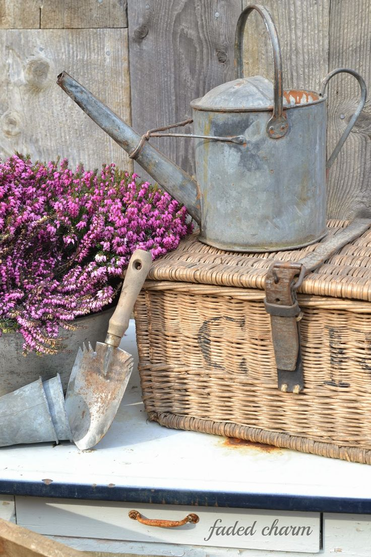 Galvanized watering can.